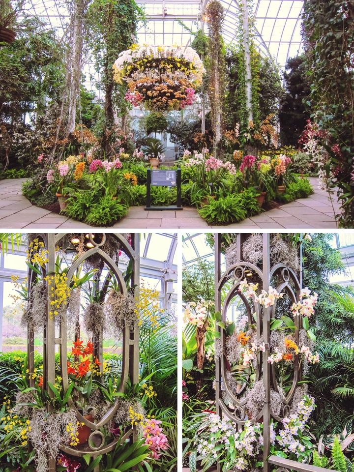 Bronx, New York : Orchid Show 2011 – OnBroadway